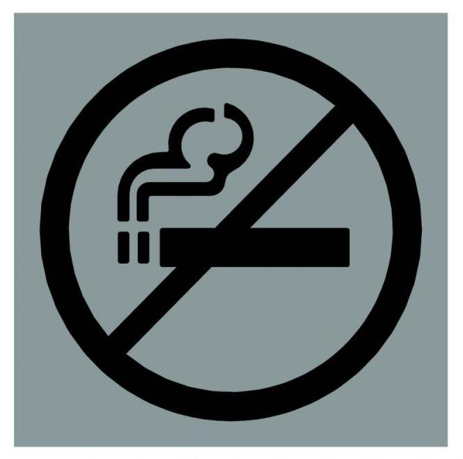 Hinweiszeichen Edelstahl eckig Symbol: Nicht Rauchen