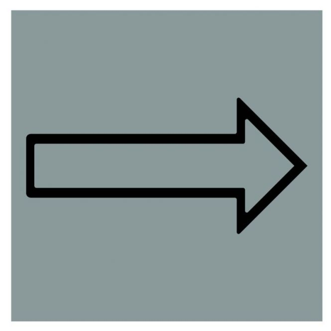 Hinweiszeichen Edelstahl eckig Symbol: Pfeil